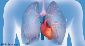 lungs_BSIP-SA_Alamy_500x270
