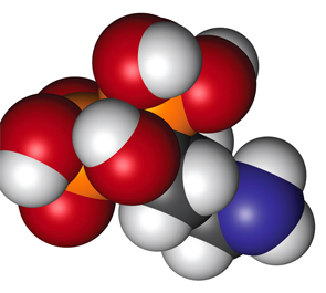 molekuul_be/shutterstock.com