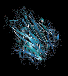 A 3D rendering of a TNF alpha cytokine protein molecule, such as infliximab, adalimumab, certolizumab and etanercept.
