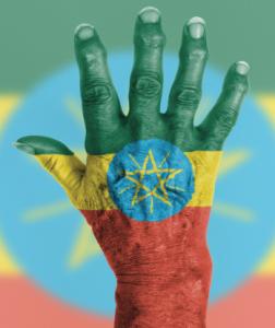 Ethiopia has no rheumatologists to treat its population with rheumatic illnesses.