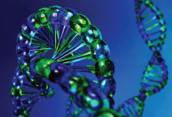 Somatic mosaicism refers to the occurrence of two genetically distinct populations of cells within an individual, derived from a postzygotic mutation.