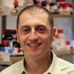 Nunzio Bottini, MD, PhD