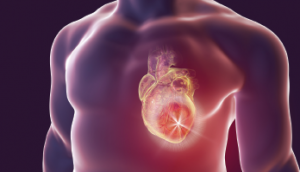 Lupus patients are at increased risk for heart-related complications.