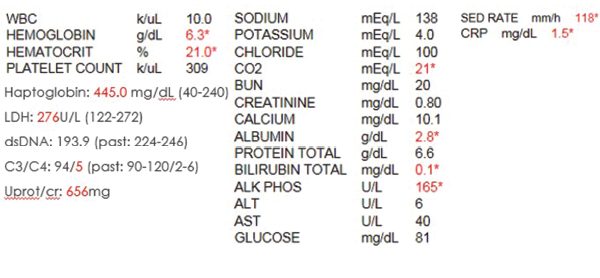 Table 1. The initial laboratory findings.