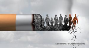 Lightspring / shutterstock.com