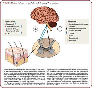 FIGURE 1: Neural Influences on Pain and Sensory Processing.