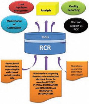 Diagram of the RCR's Functionality