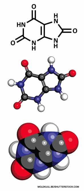 This image shows the chemical structure of a uric acid molecule.