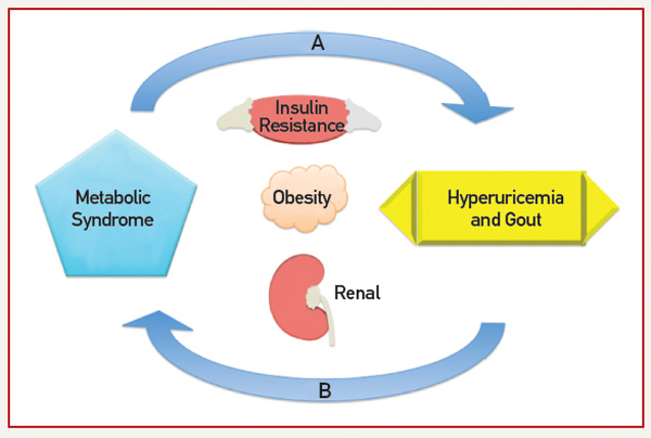 """speech obesity and food promotes insulin In contrast, a sedentary """"couch potato"""" lifestyle is a feature of diet-induced obesity and insulin resistance, increasing the risk of chronic inflammation."""